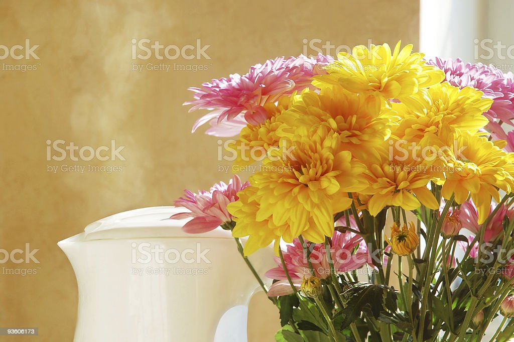 Morning still life stock photo