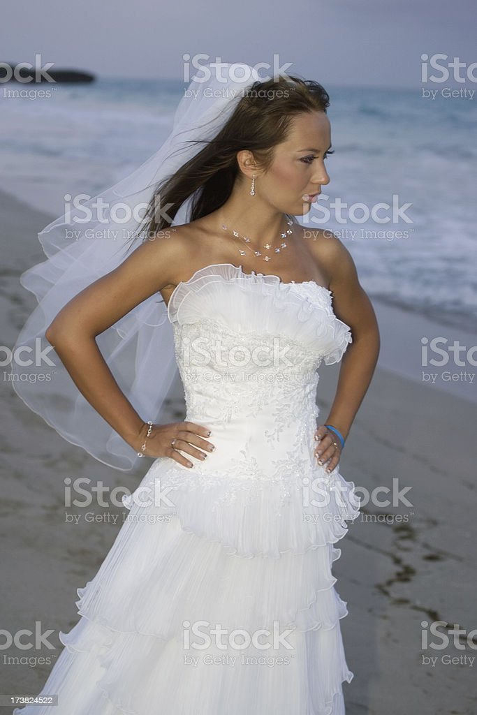 Morning stroll on the beach royalty-free stock photo