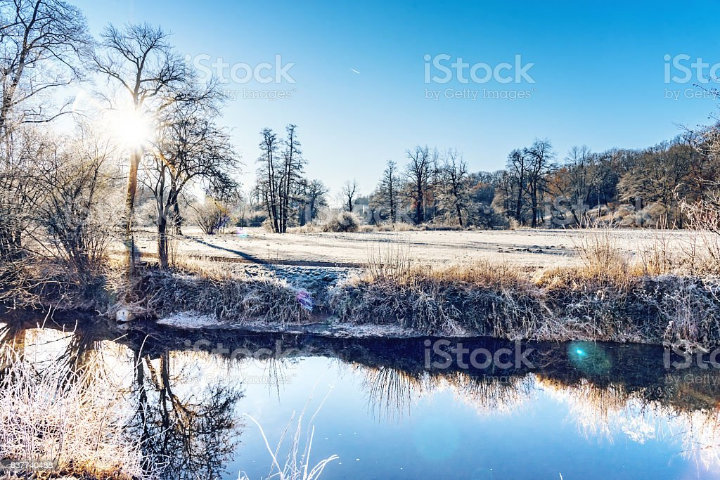 morning sun over Ilmpark in Weimar with hoar frost stock photo