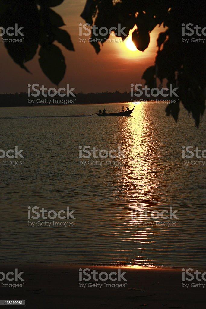 Sol de la mañana foto de stock libre de derechos