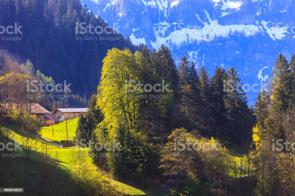 Morning Sunlight Bernese Oberland stock photo