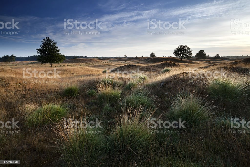 morning sunlight through hills royalty-free stock photo
