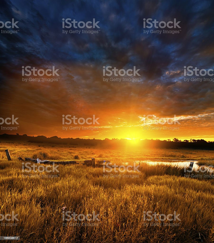 Morning Sunrays stock photo