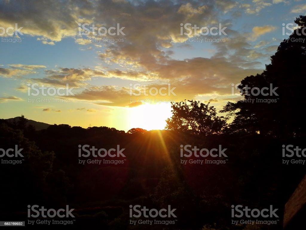 Morning Sunrise Over Woodland stock photo