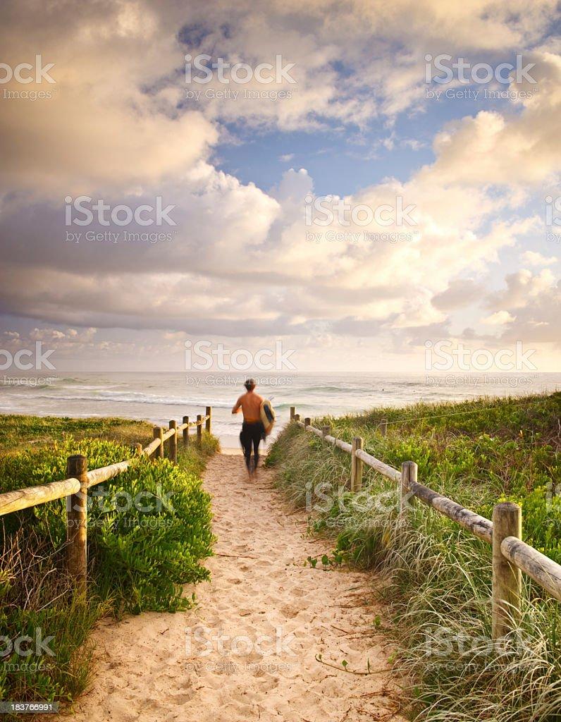 Morning Surf stock photo