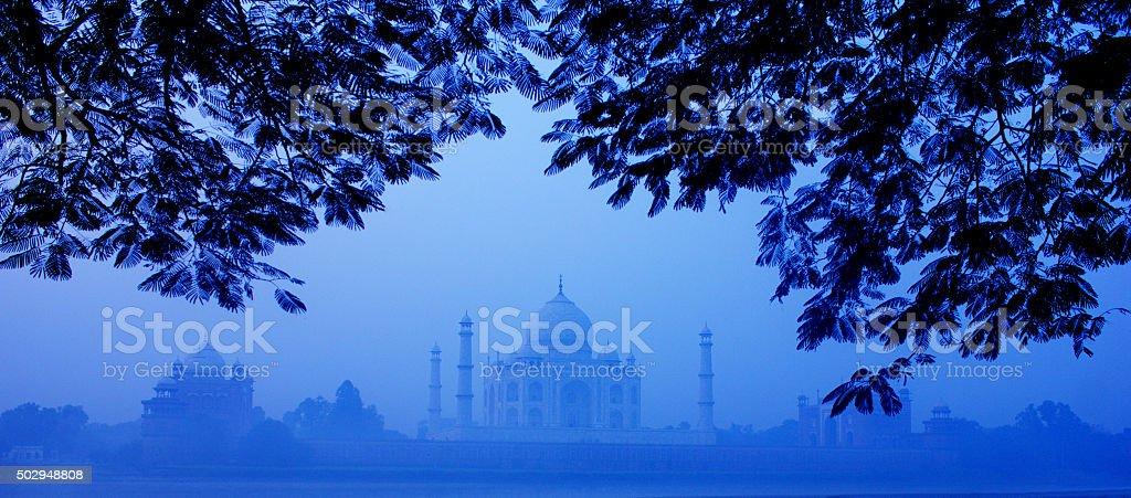 Morning Tajmahal stock photo