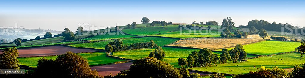 Morning view of green fields on hillside with clear sky royalty-free stock photo