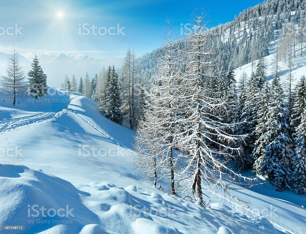 Morning winter misty mountain landscape stock photo
