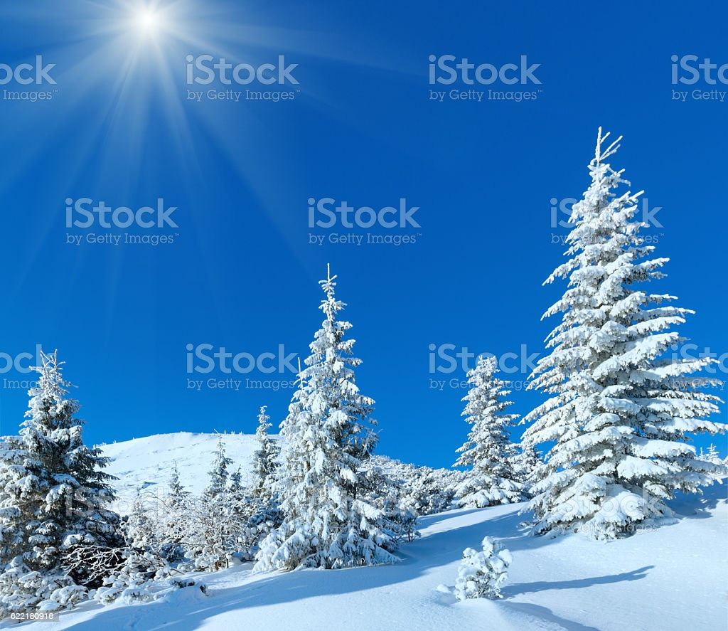 Morning winter mountain sunshiny landscape stock photo