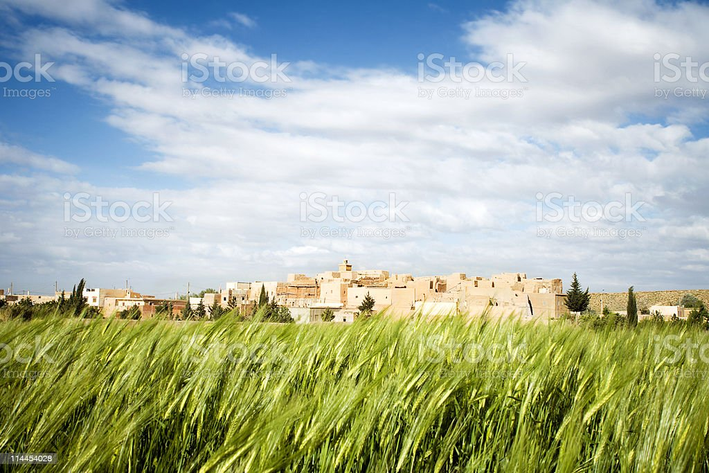 Moroccan Casbah and Wheat stock photo
