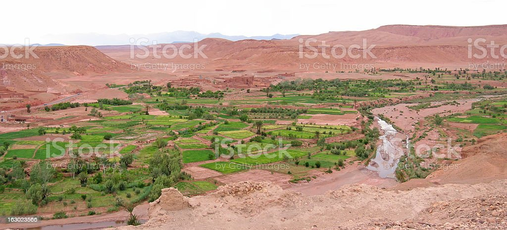 Moroccan fortress in a desert oasis stock photo