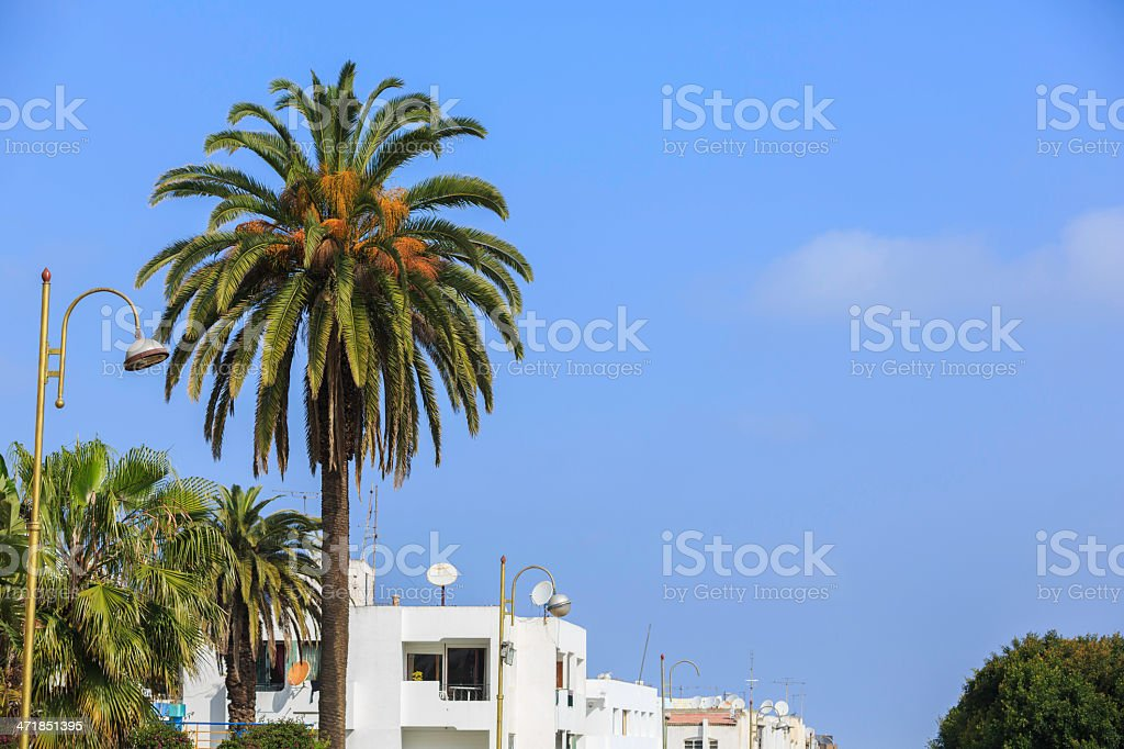moroccan street royalty-free stock photo