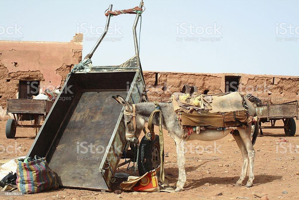 Moroccan van royalty-free stock photo