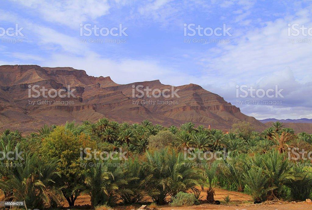 Morocco, Draa Valley. stock photo