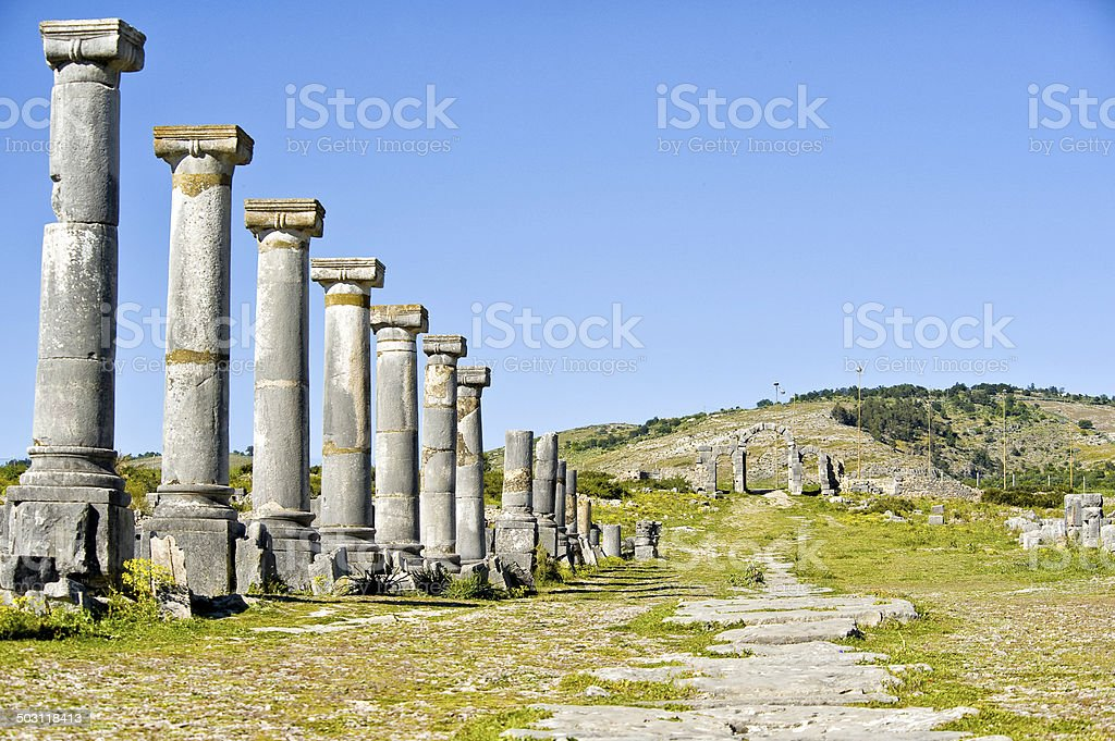 VOLUBILIS – Morocco stock photo