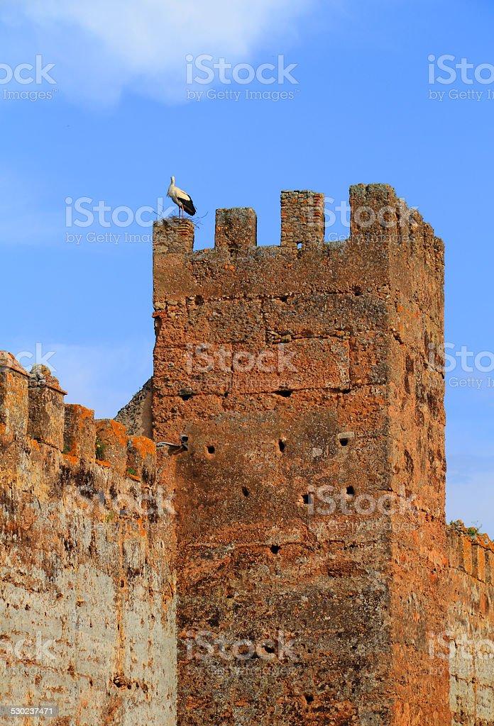 Morocco, Rabat, Chellah - UNESCO World Heritage site. stock photo