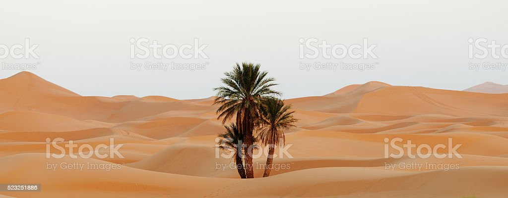 Morocco. Sand dunes of Sahara desert stock photo