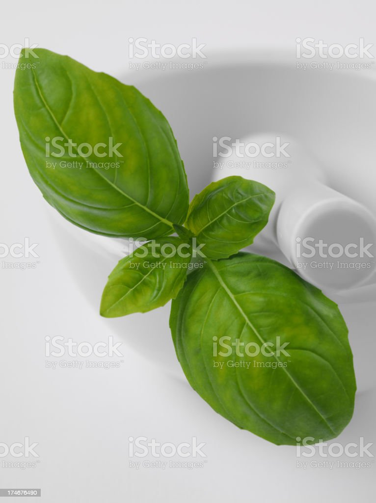 Mortar and Pestle with Basil royalty-free stock photo