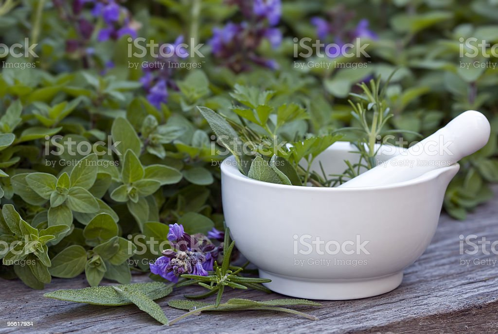 Mortar and pestle with herbs in the garden stock photo