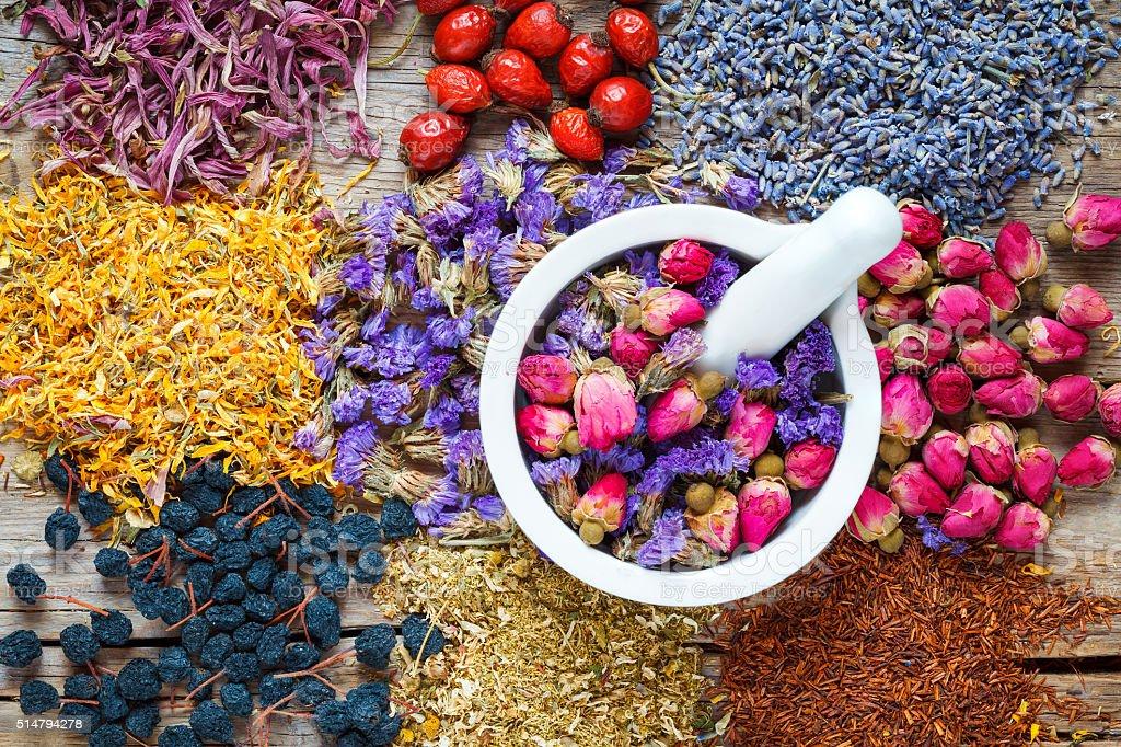 Mortar of healing herbs, herbal tea assortment and berries stock photo