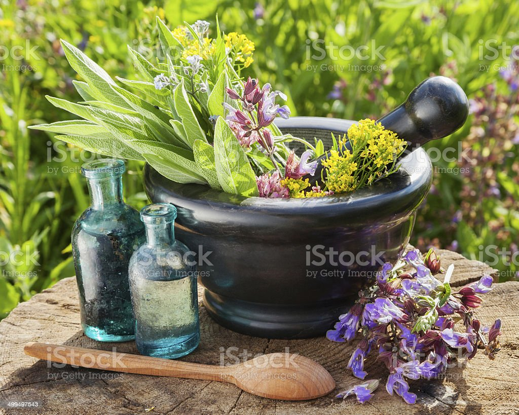 mortar with healing herbs and sage stock photo