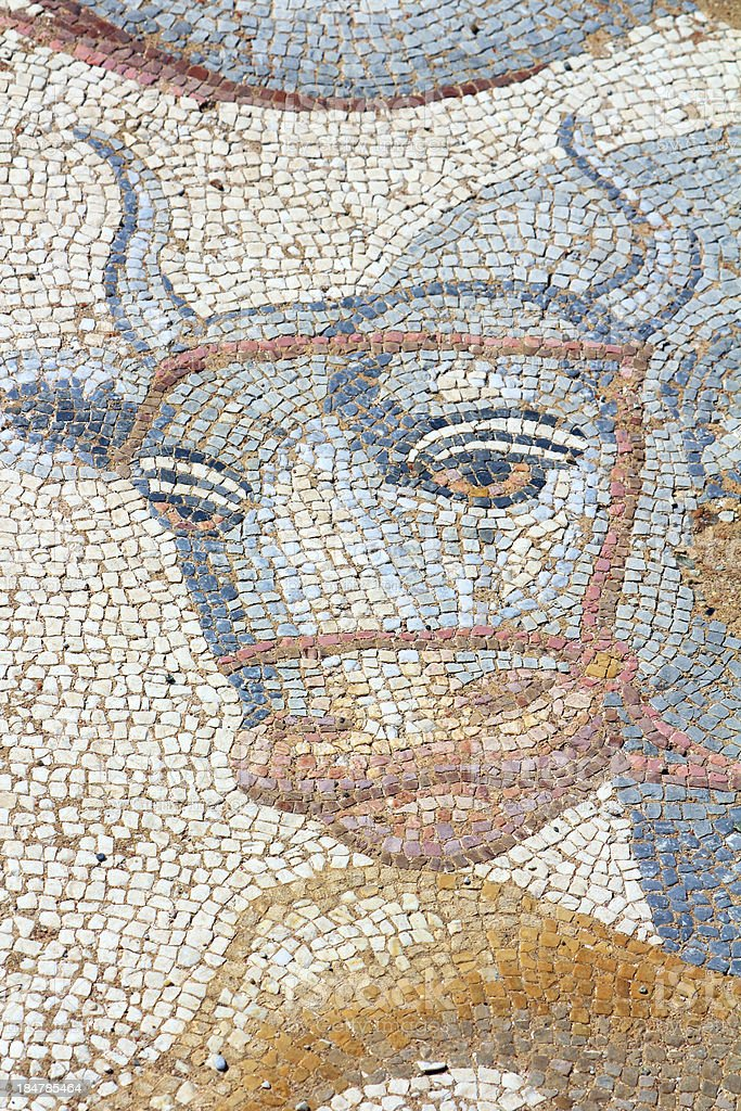 Mosaics at The Great Baths, Dion Archeological Site in Greece royalty-free stock photo