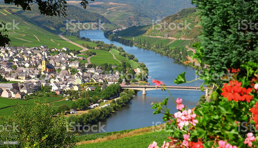 Mosel River and Valley with village in vineyard stock photo