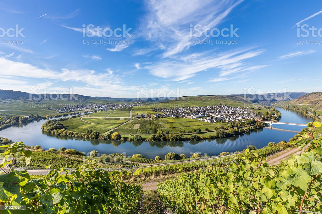 Moselle river loop in Trittenheim, Germany. stock photo
