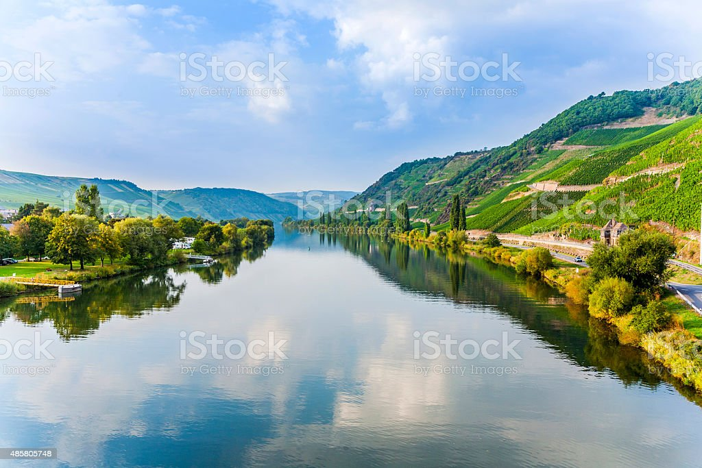 moselle valley at Trittenheim stock photo