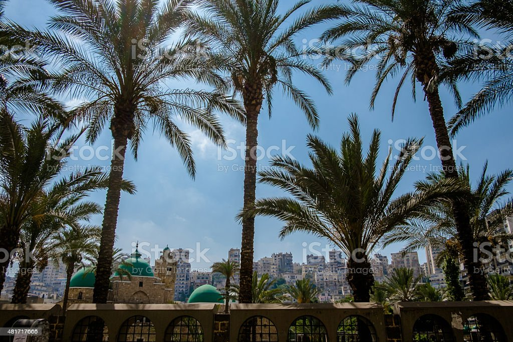 Mosque and palm trees in Tripoli stock photo