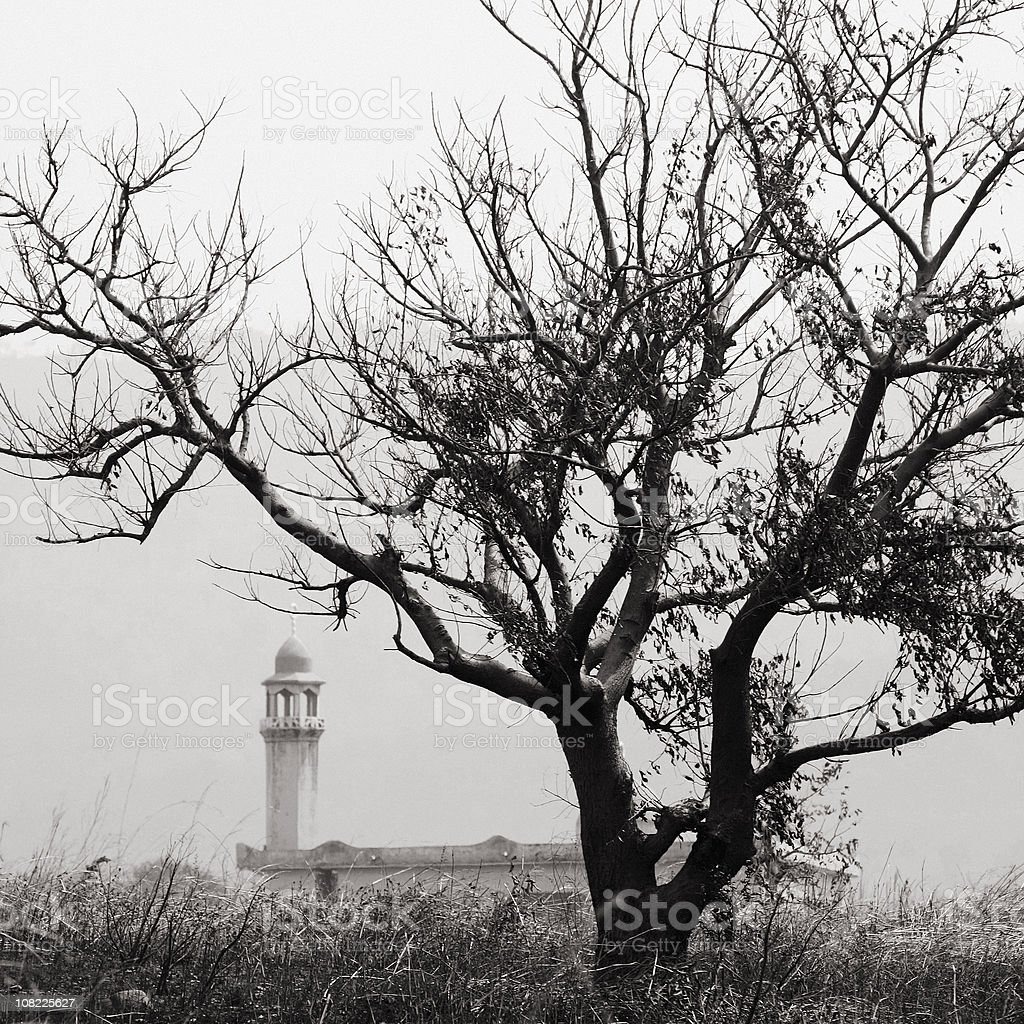 Mosque besides Tree, Black and White stock photo