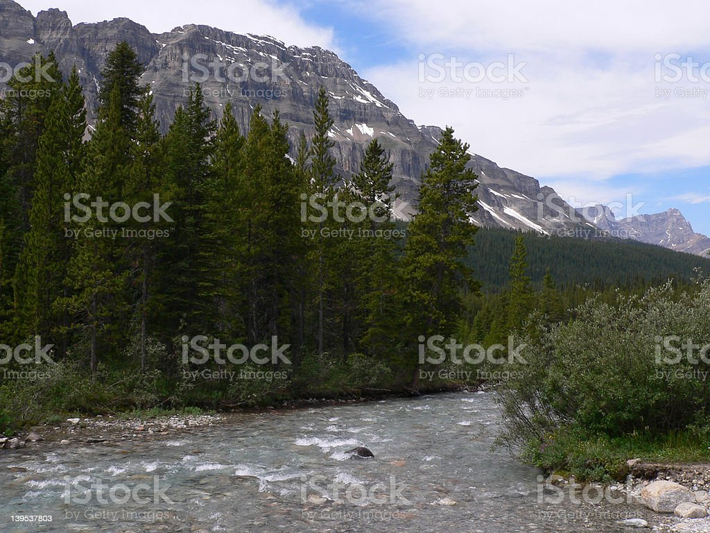 Mosquito Creek, Banff stock photo