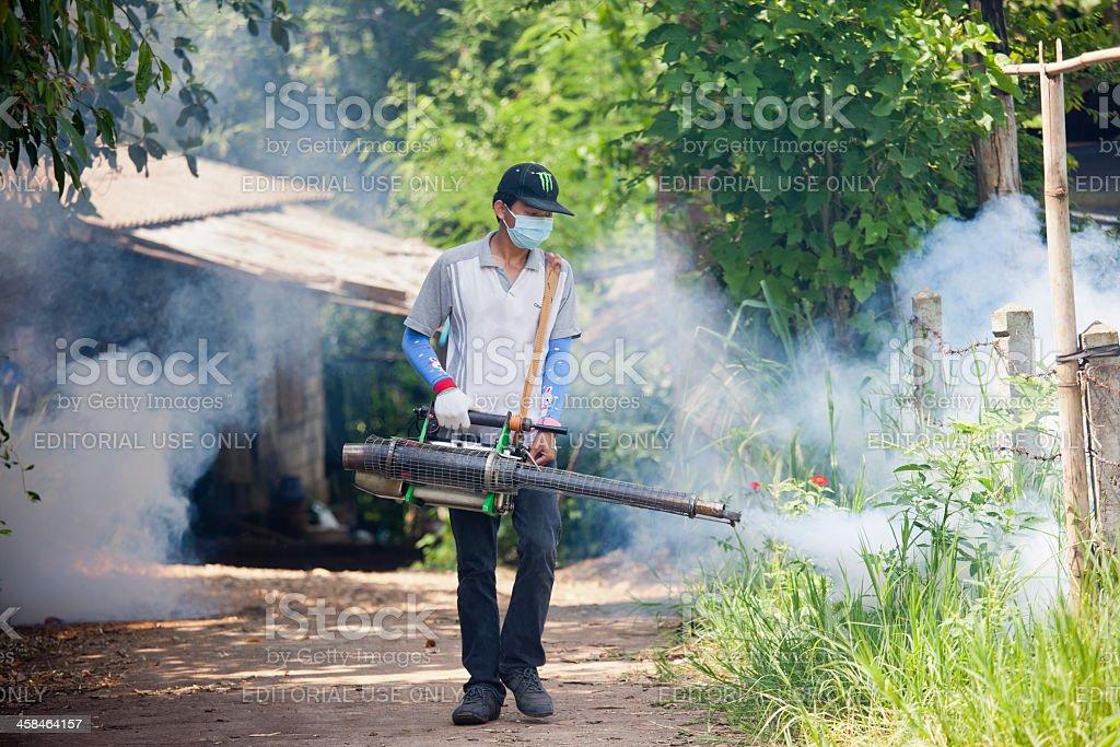 Mosquito eradication. stock photo