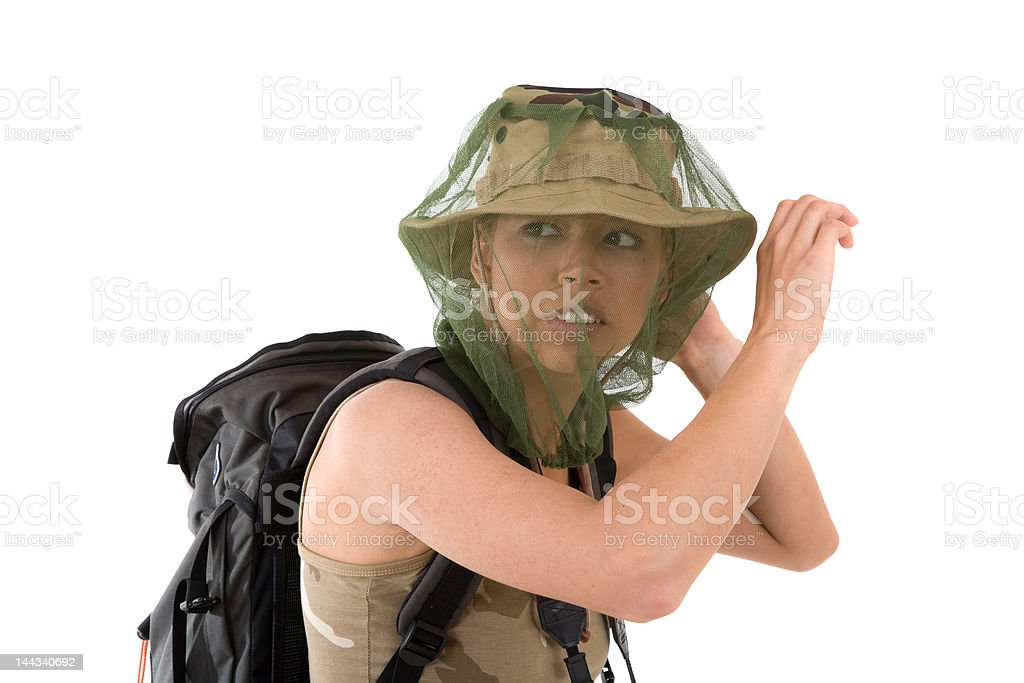 Mosquito fright stock photo