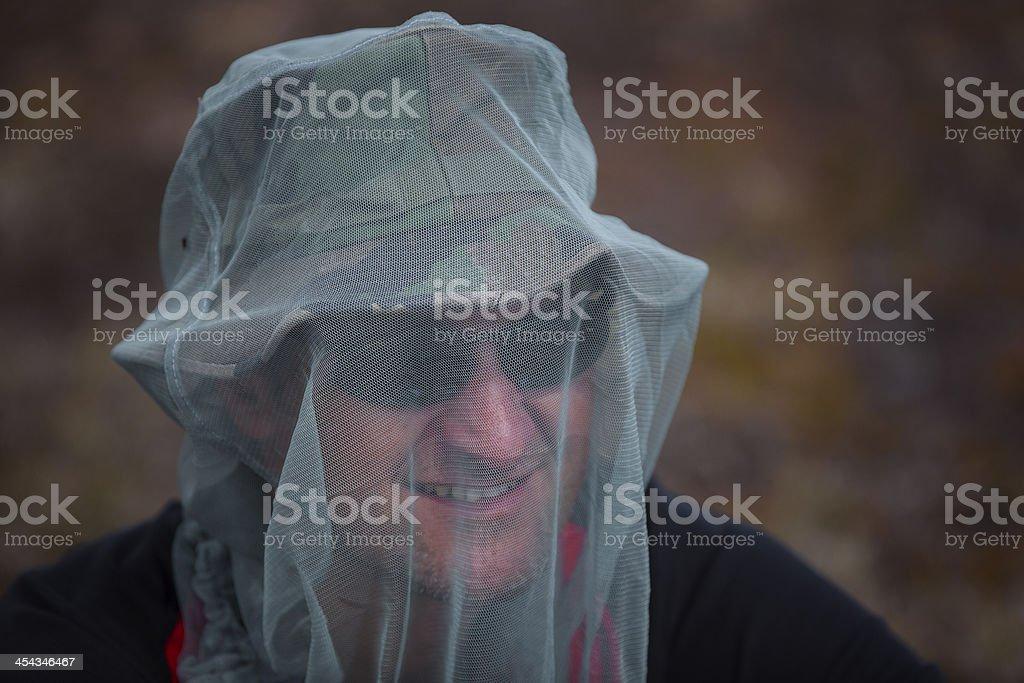 Mosquito  net stock photo