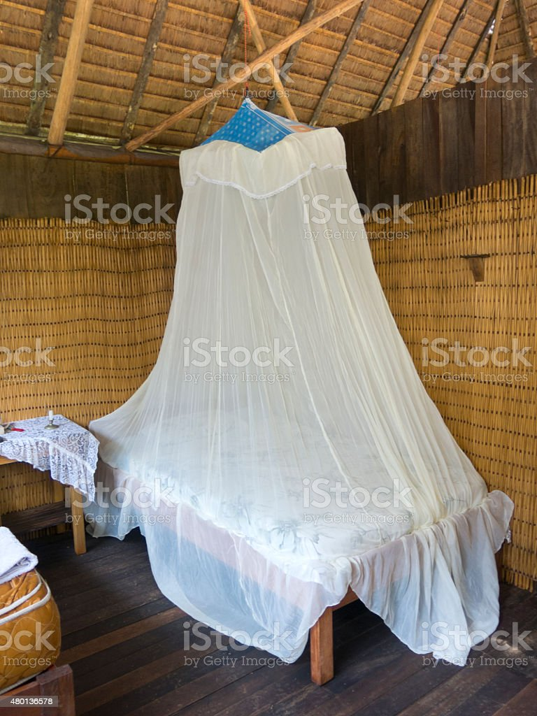Mosquito net stock photo