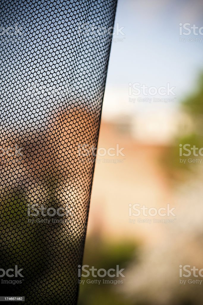 mosquito netting stock photo