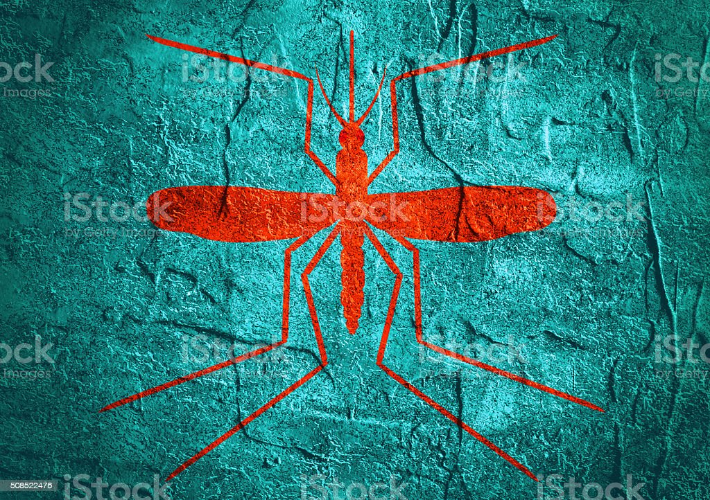 mosquito silhouette on concrete textured surface stock photo