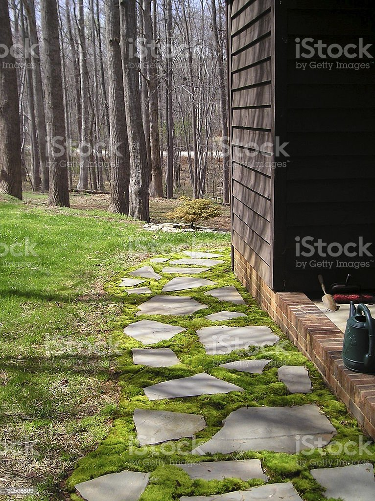 moss and slate royalty-free stock photo