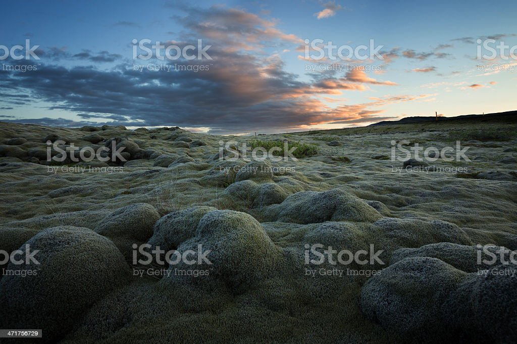 Moss covered boulders royalty-free stock photo