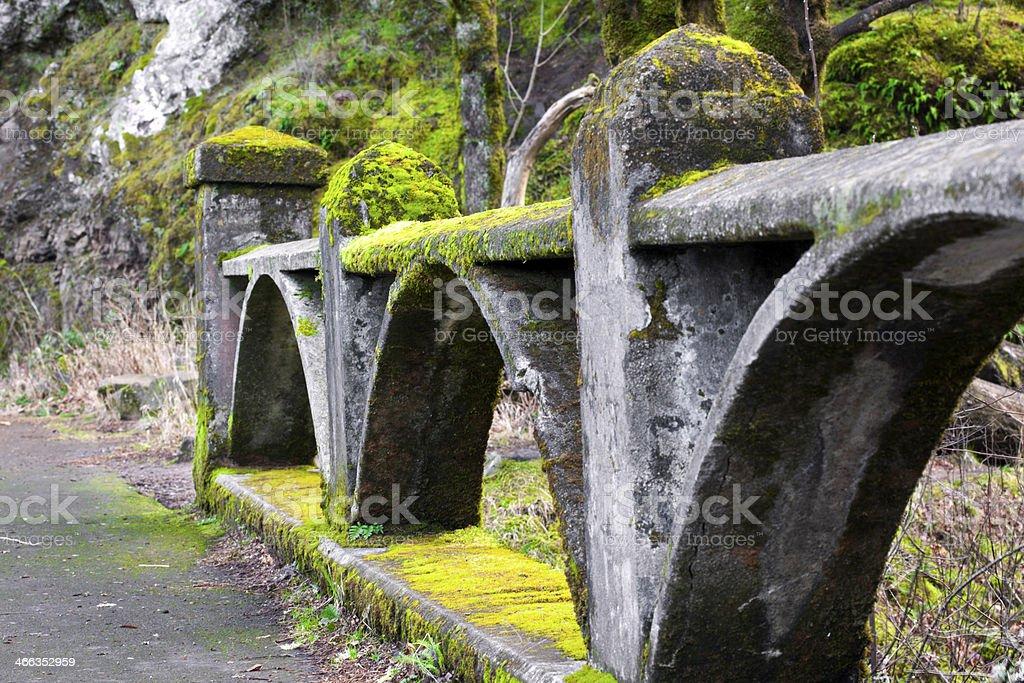 Moss Covered Bridge stock photo