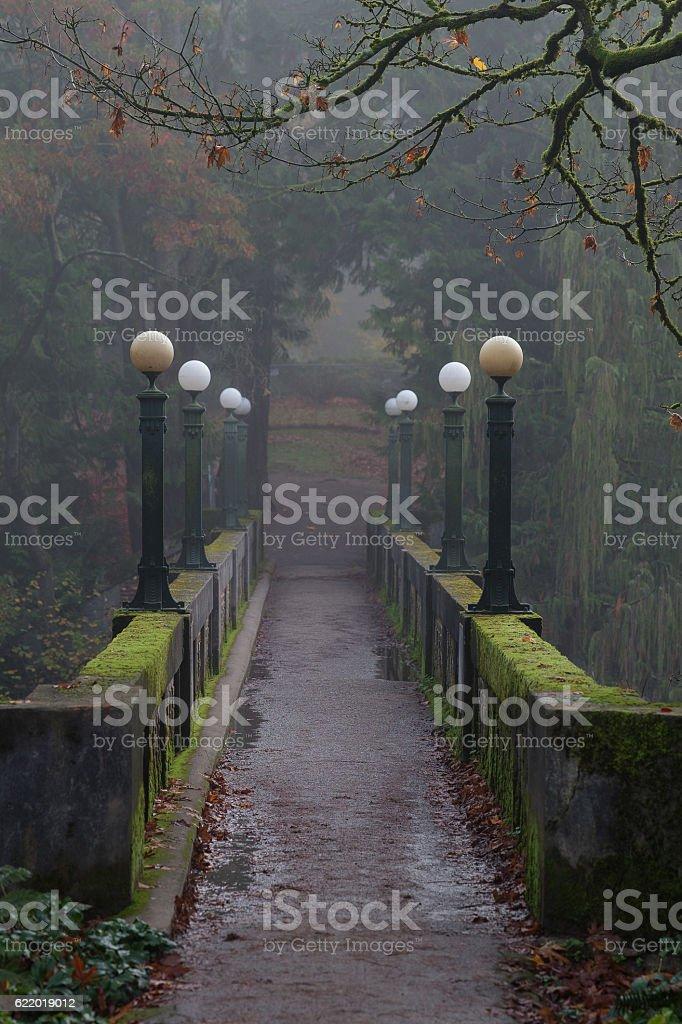 Moss Covered Footbridge in the Morning Fog stock photo