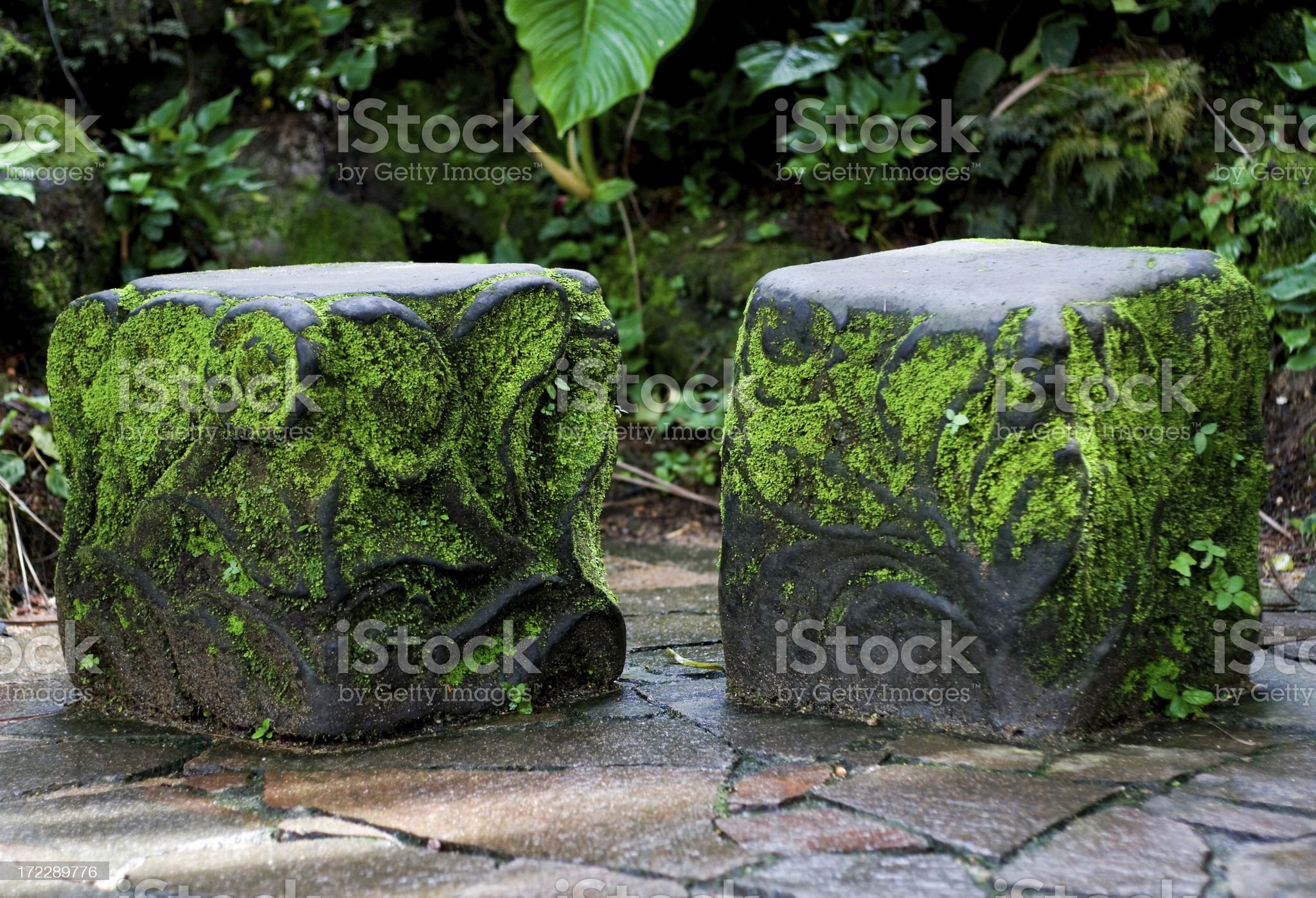 Moss covered seats royalty-free stock photo
