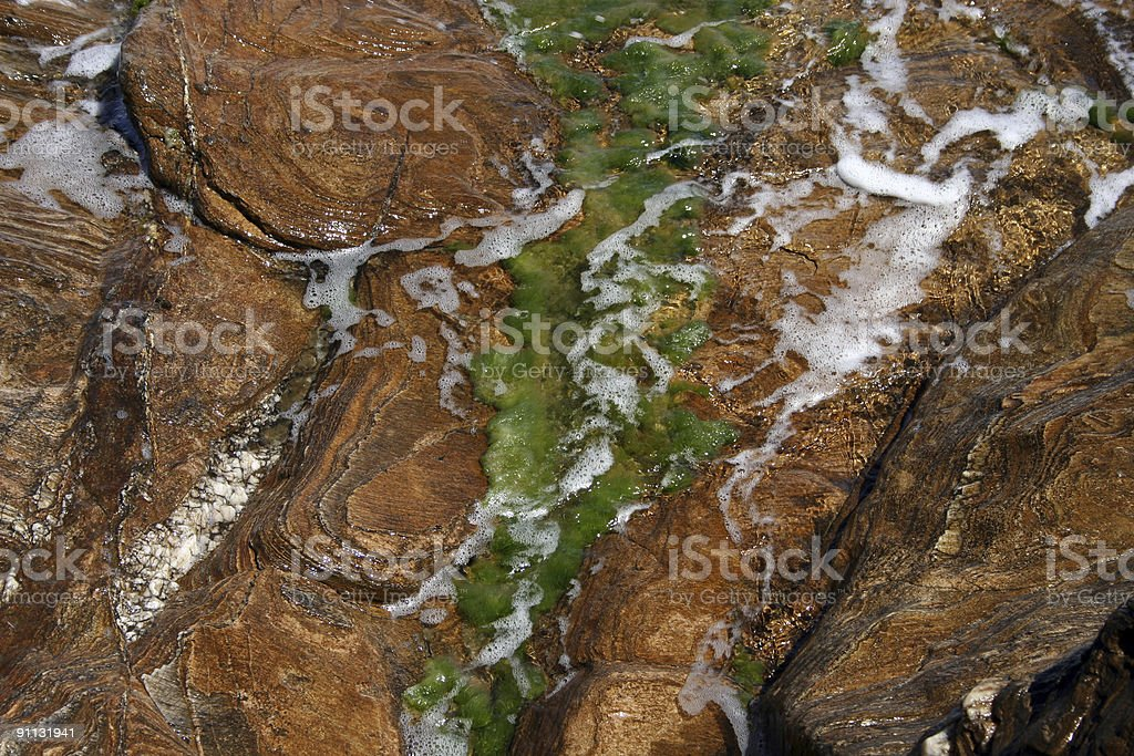 Moss on Beach Rocks royalty-free stock photo
