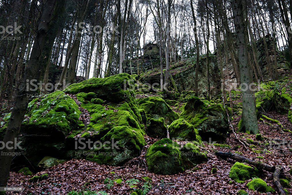 Moss on rocks in forest of Mullerthal in Little Switzerland stock photo
