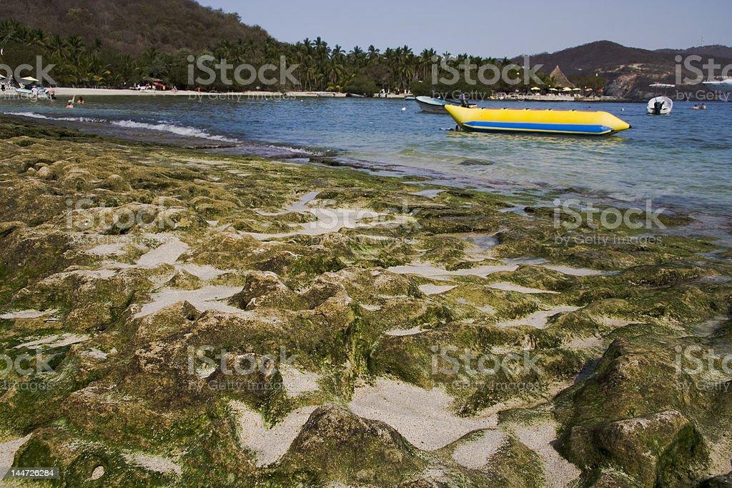 Moss Rocks at Los Gatos Beach stock photo
