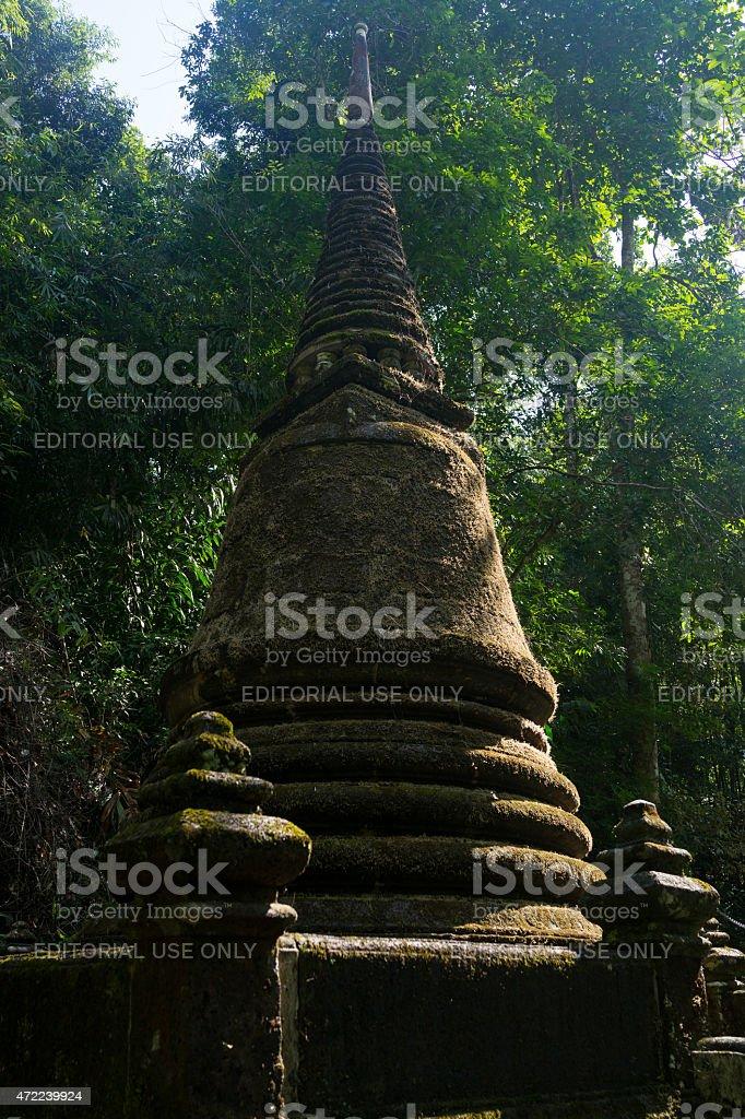 Recouvertes de mousse dans la forêt ancienne pagode photo libre de droits
