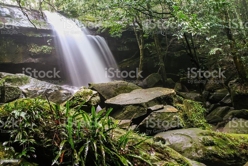 Moss-covered rocks near wallter fall in rainsforest stock photo
