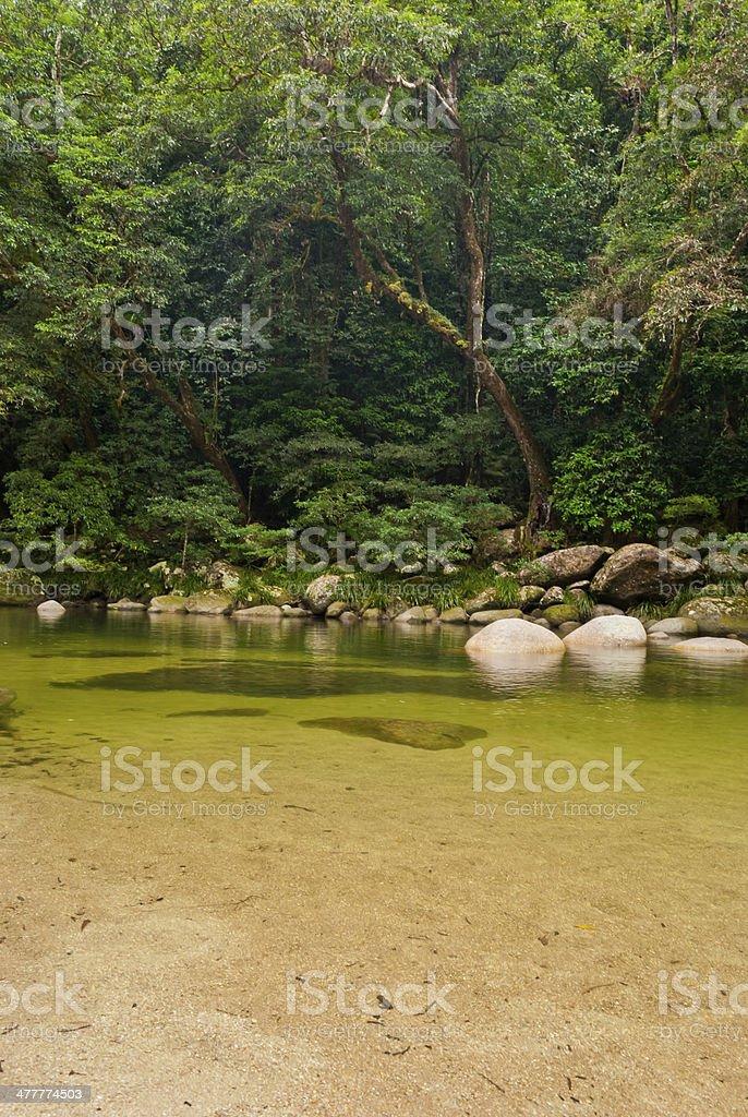 Mossman Gorge, Daintree National Park, Australia stock photo