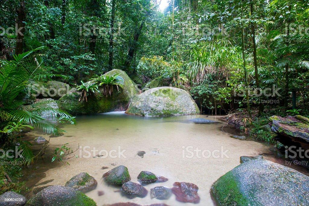 Mossman Gorge Scenery stock photo